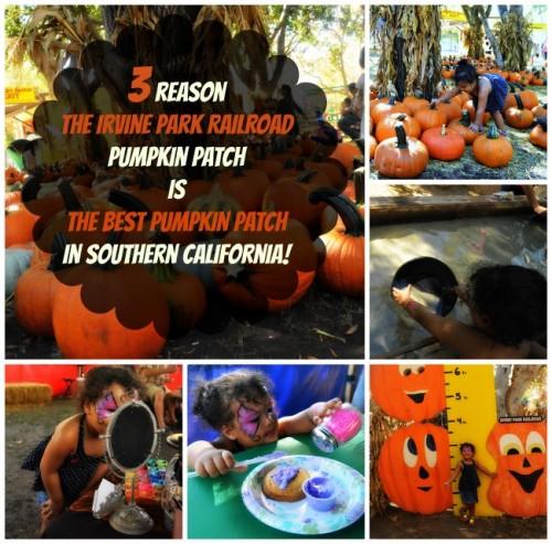 3 reasons The Irvine Park Railroad Pumpkin Patch is the best pumpkin patch in Southern California! |@IrvineParkRR #pumpkinpatch